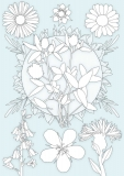 SAP_flower_colour