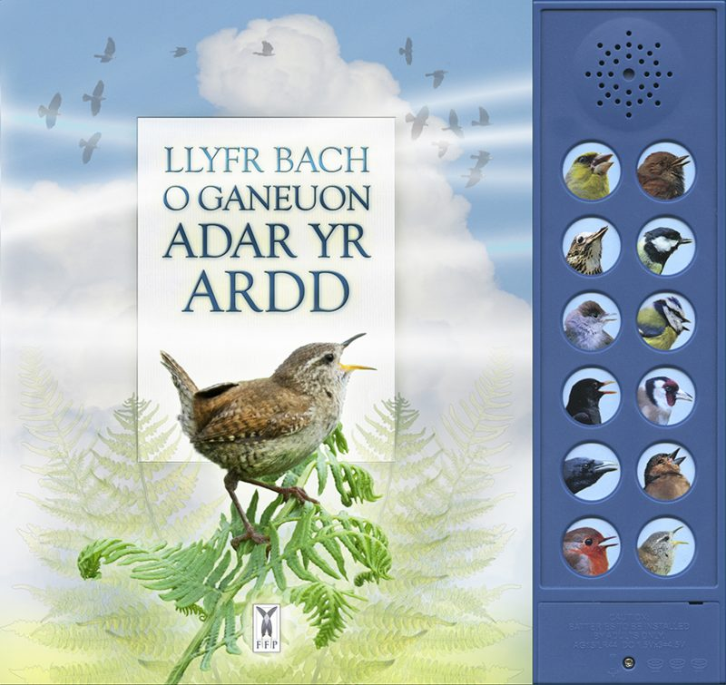 The Little Book of Garden Bird Songs (Welsh Edition)