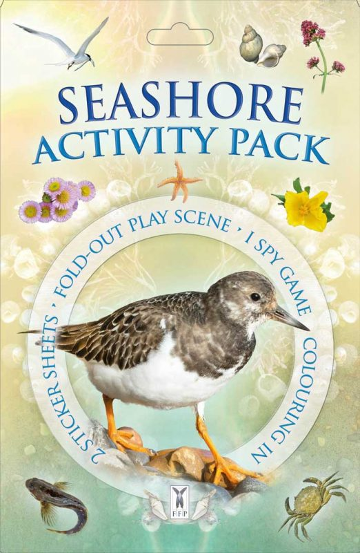 Seashore Activity Pack