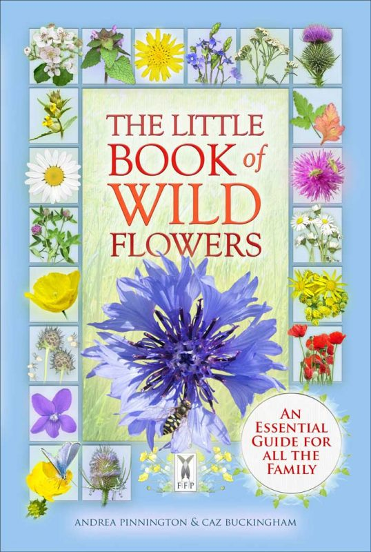 The Little Book of Wild Flowers